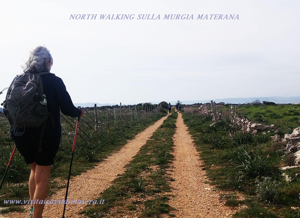 ESCURSIONI E TREKKING NATURALISTICI A MATERA: WALKING NEL PARCO DELLA MURGIA MATERANA