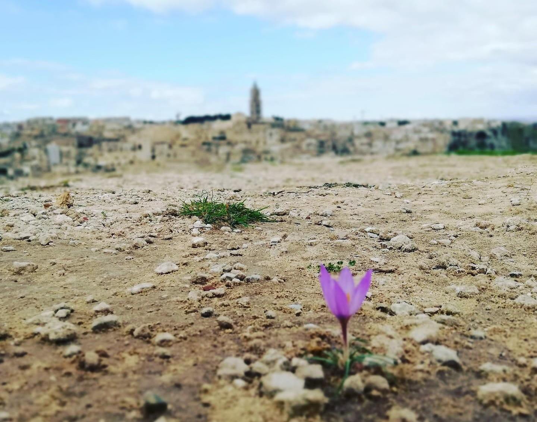 I SASSI DI MATERA: un luogo mistico dove è possible contemplare un territorio unico